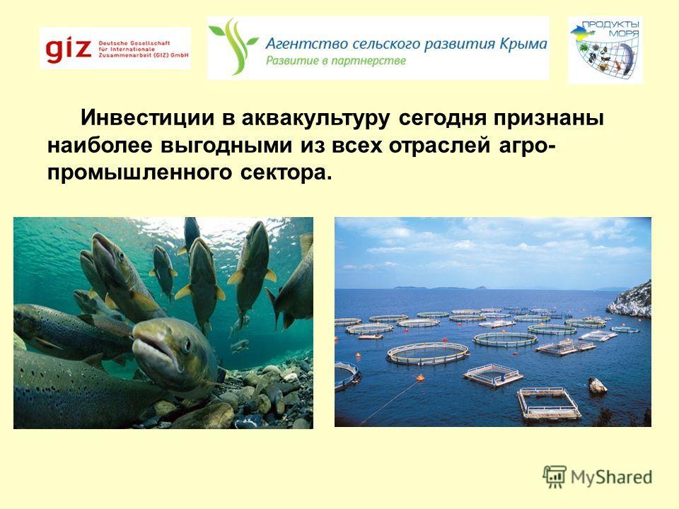 Инвестиции в аквакультуру сегодня признаны наиболее выгодными из всех отраслей агро- промышленного сектора.