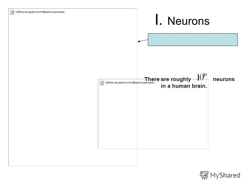 I. Neurons There are roughly neurons in a human brain.