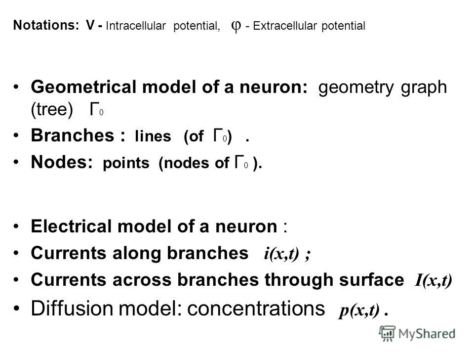 Notations: V - Intracellular potential, φ - Extracellular potential Geometrical model of a neuron: geometry graph (tree) Г 0 Branches : lines (of Г 0 ). Nodes: points (nodes of Г 0 ). Electrical model of a neuron : Currents along branches i(x,t) ; Cu