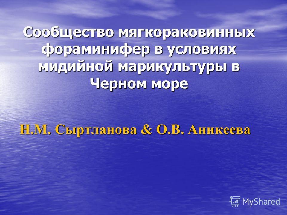 Сообщество мягкораковинных фораминифер в условиях мидийной марикультуры в Черном море Н.М. Сыртланова & О.В. Аникеева