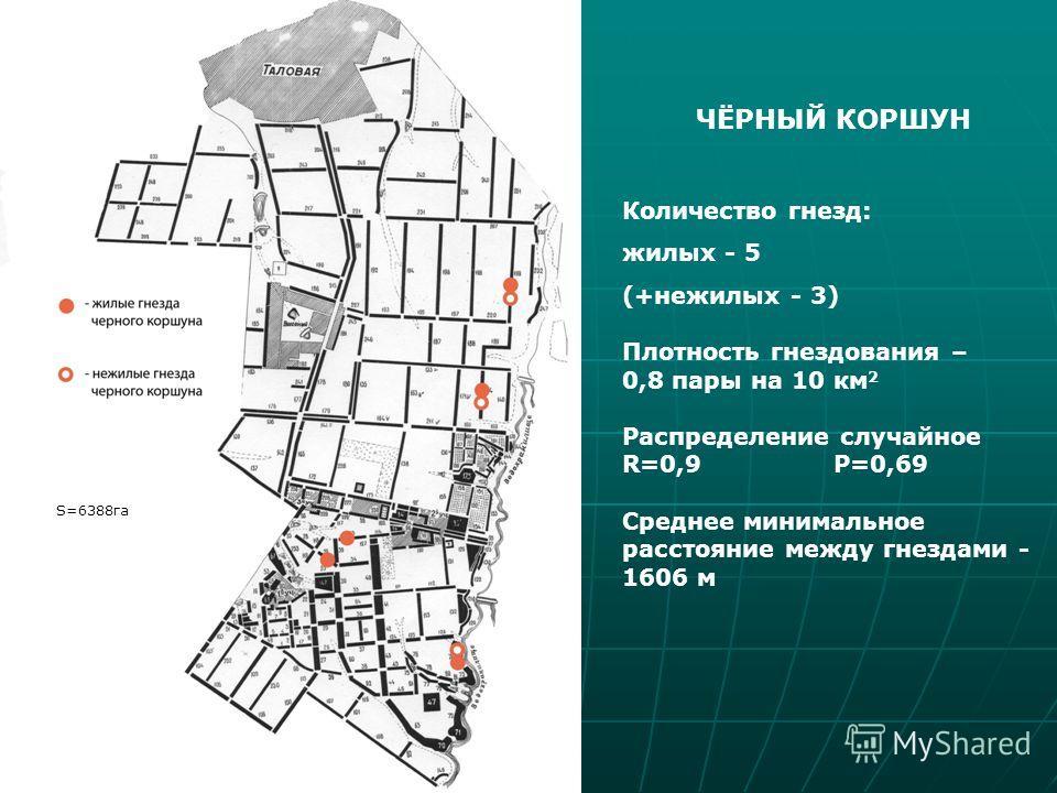 ЧЁРНЫЙ КОРШУН Количество гнезд: жилых - 5 (+нежилых - 3) Плотность гнездования – 0,8 пары на 10 км 2 Распределение случайное R=0,9 P=0,69 Среднее минимальное расстояние между гнездами - 1606 м S=6388га