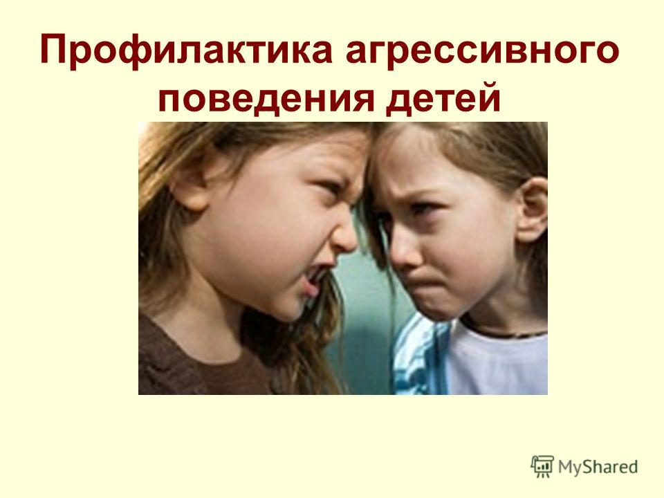 Профилактика агрессивного поведения детей