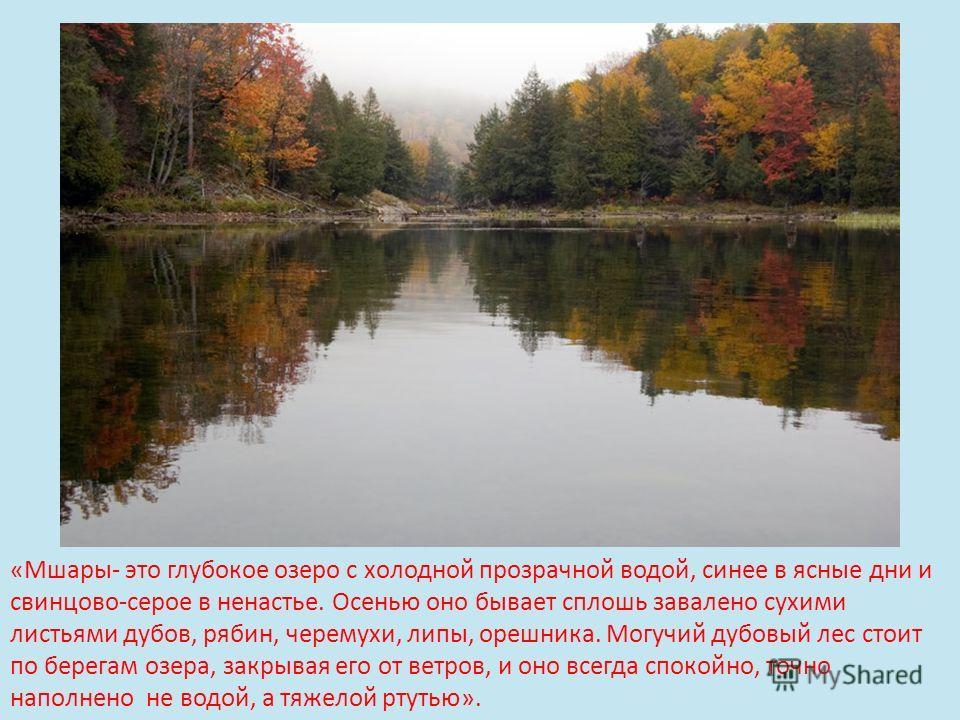 «Мшары- это глубокое озеро с холодной прозрачной водой, синее в ясные дни и свинцово-серое в ненастье. Осенью оно бывает сплошь завалено сухими листьями дубов, рябин, черемухи, липы, орешника. Могучий дубовый лес стоит по берегам озера, закрывая его