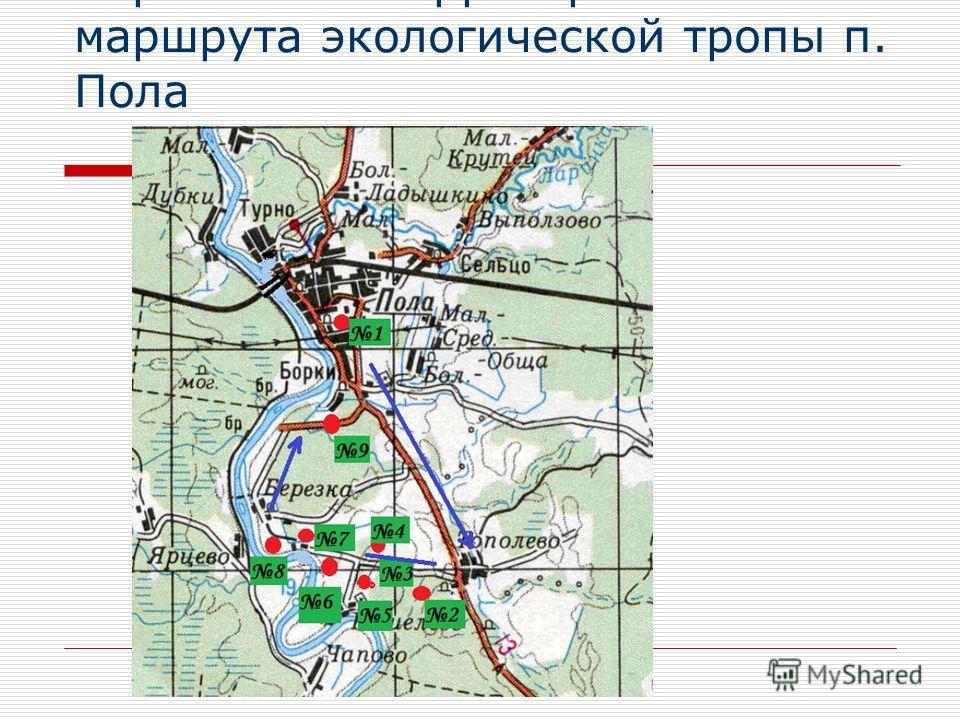 Карта-схема территории маршрута экологической тропы п. Пола