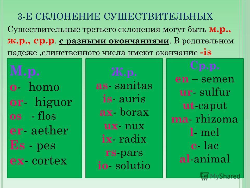 3-Е СКЛОНЕНИЕ СУЩЕСТВИТЕЛЬНЫХ Существительные третьего склонения могут быть м.р., ж.р., ср.р. с разными окончаниями. В родительном падеже,единственного числа имеют окончание -is М.р. o - homo or - higuor os - flos er - aether Es - pes ex - cortex Ср.