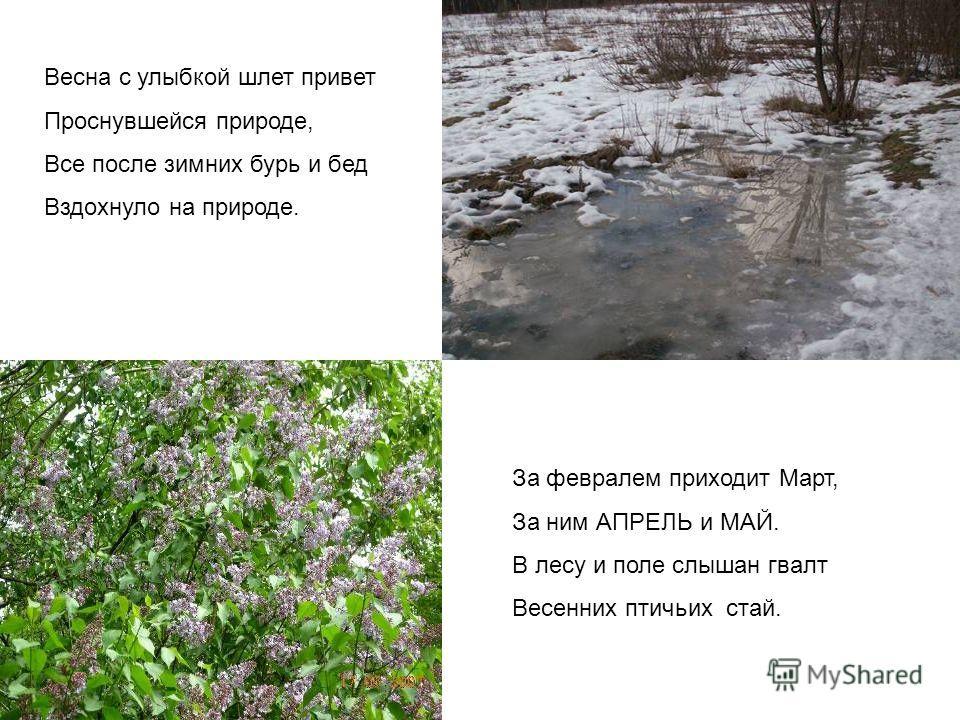 За февралем приходит Март, За ним АПРЕЛЬ и МАЙ. В лесу и поле слышан гвалт Весенних птичьих стай. Весна с улыбкой шлет привет Проснувшейся природе, Все после зимних бурь и бед Вздохнуло на природе.
