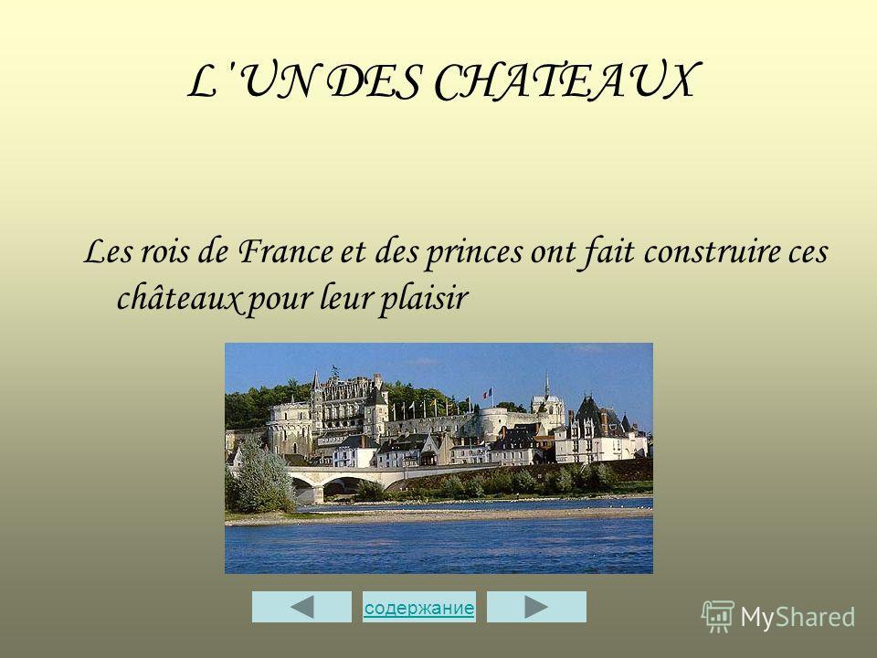 L΄UN DES CHATEAUX Les rois de France et des princes ont fait construire ces châteaux pour leur plaisir содержание