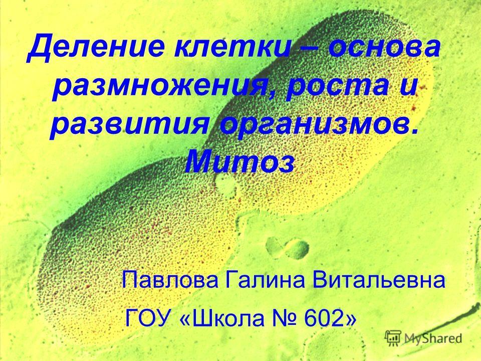 Деление клетки – основа размножения, роста и развития организмов. Митоз Павлова Галина Витальевна ГОУ «Школа 602»