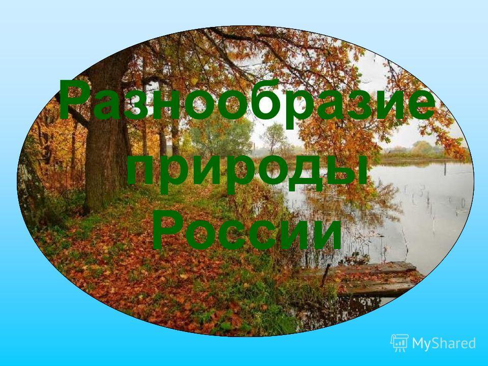 Разнообразие природы России
