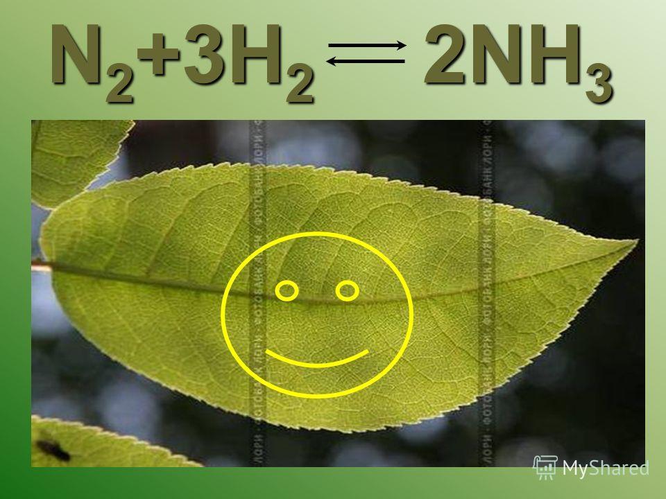N 2 +3H 2 2NH 3
