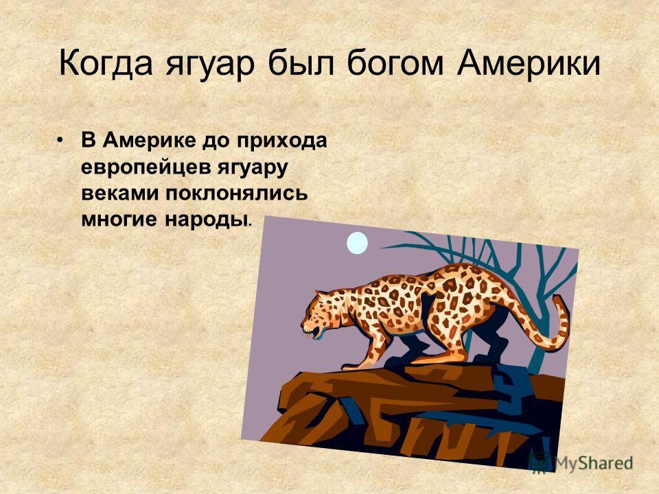 Когда ягуар был богом Америки В Америке до прихода европейцев ягуару веками поклонялись многие народы.