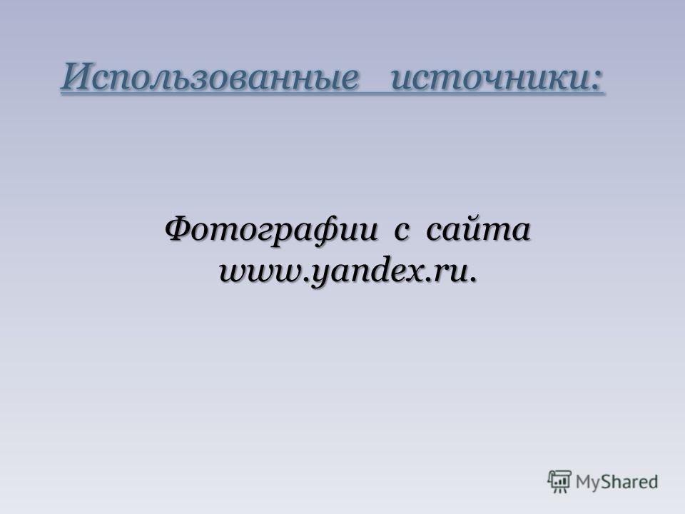 Фотографии с сайта www.yandex.ru.