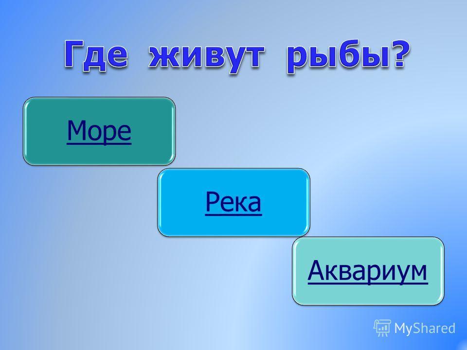 МореРека Аквариу м