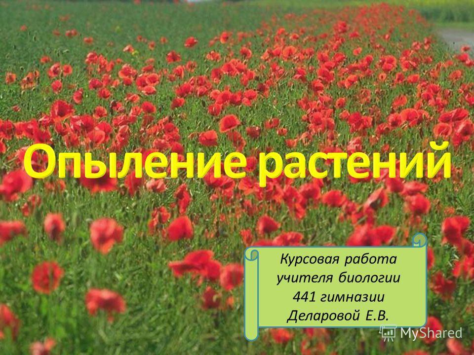 Курсовая работа учителя биологии 441 гимназии Деларовой Е.В.
