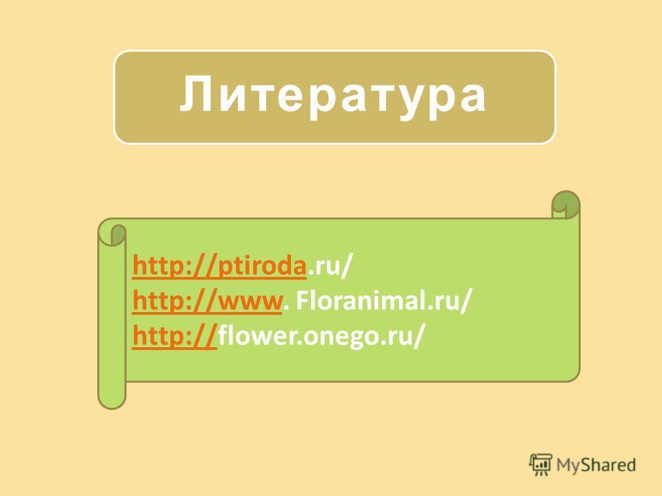 Литература http://ptirodahttp://ptiroda.ru/ http://wwwhttp://www. Floranimal.ru/ http://http://flower.onego.ru/