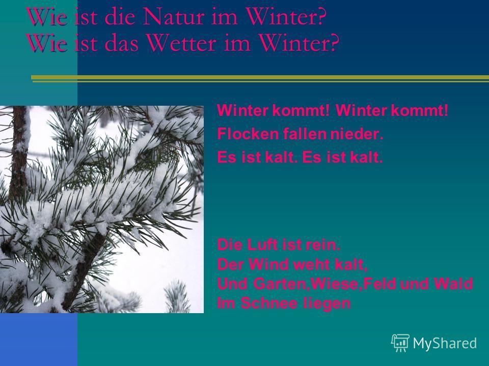 Wie ist die Natur im Winter? Wie ist das Wetter im Winter? Winter kommt! Flocken fallen nieder. Es ist kalt. Die Luft ist rein. Der Wind weht kalt, Und Garten,Wiese,Feld und Wald Im Schnee liegen