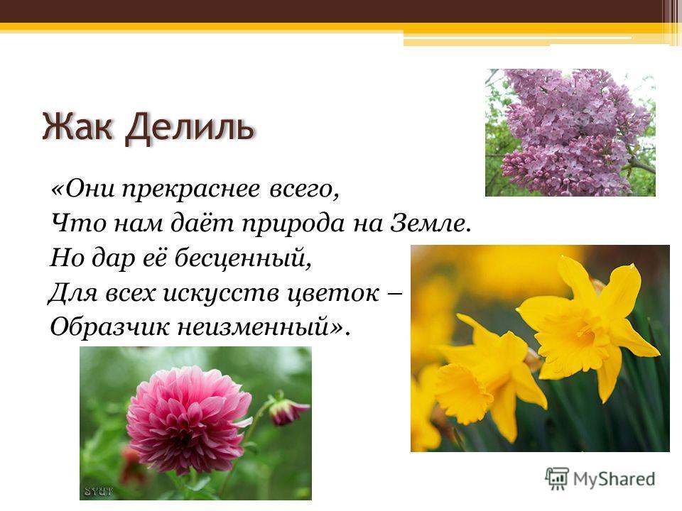 Жак Делиль «Они прекраснее всего, Что нам даёт природа на Земле. Но дар её бесценный, Для всех искусств цветок – Образчик неизменный».