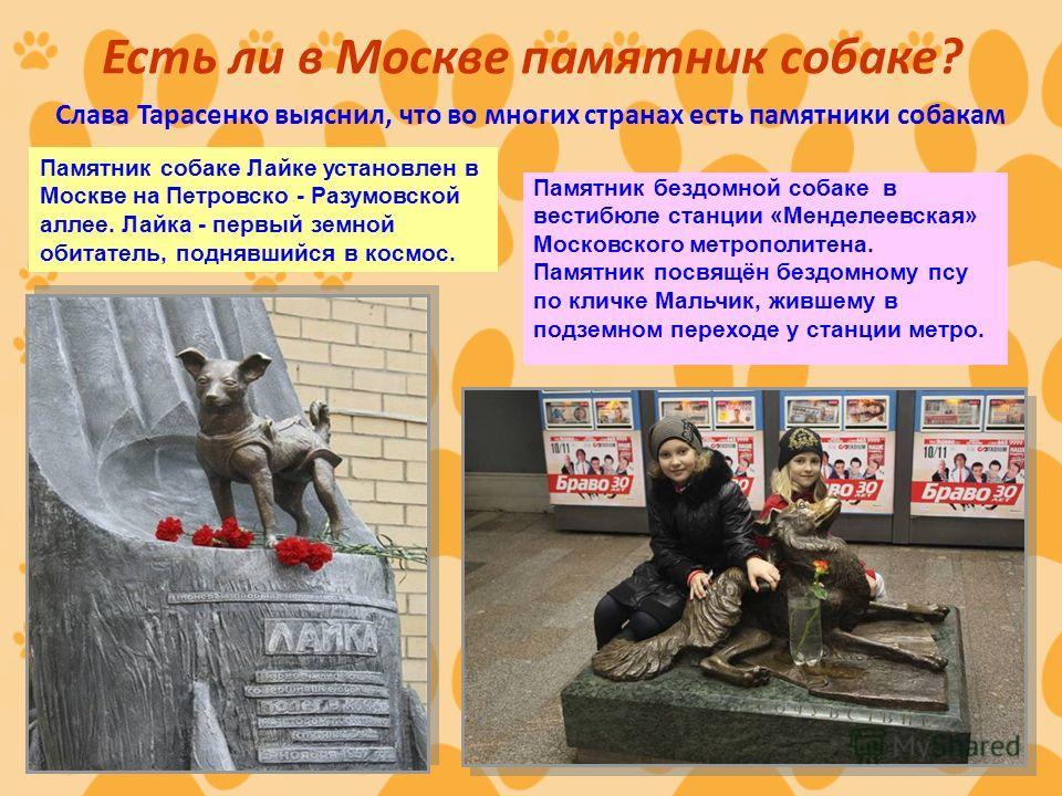 Есть ли в Москве памятник собаке? Слава Тарасенко выяснил, что во многих странах есть памятники собакам Памятник собаке Лайке установлен в Москве на Петровско - Разумовской аллее. Лайка - первый земной обитатель, поднявшийся в космос. Памятник бездом