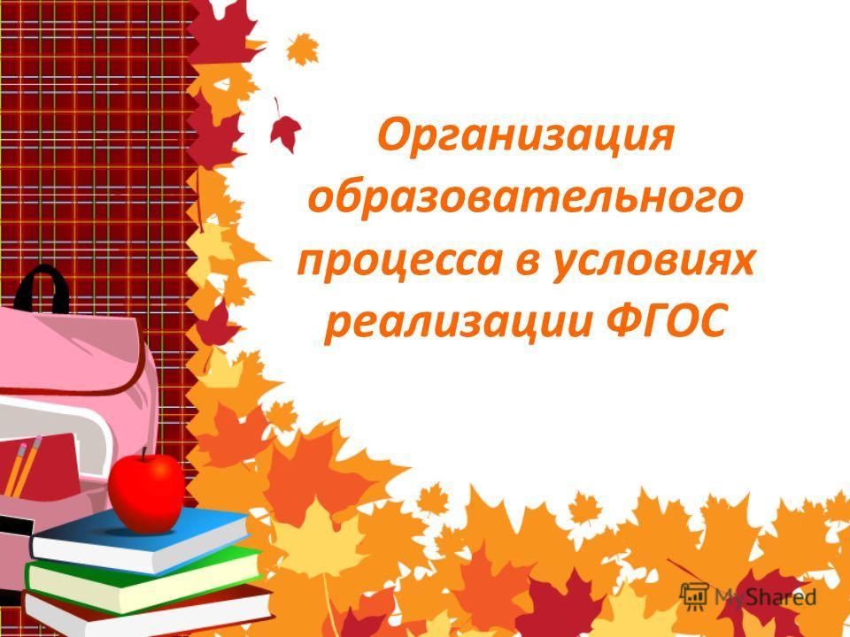 Организация образовательного процесса в условиях реализации ФГОС