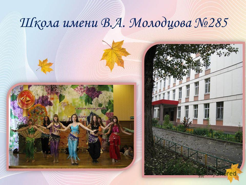 Школа имени В.А. Молодцова 285