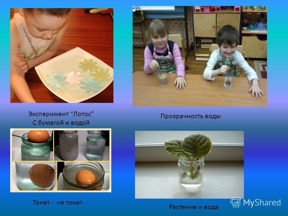 Эксперимент Лотос С бумагой и водой Прозрачность воды Тонет - не тонет Растение и вода