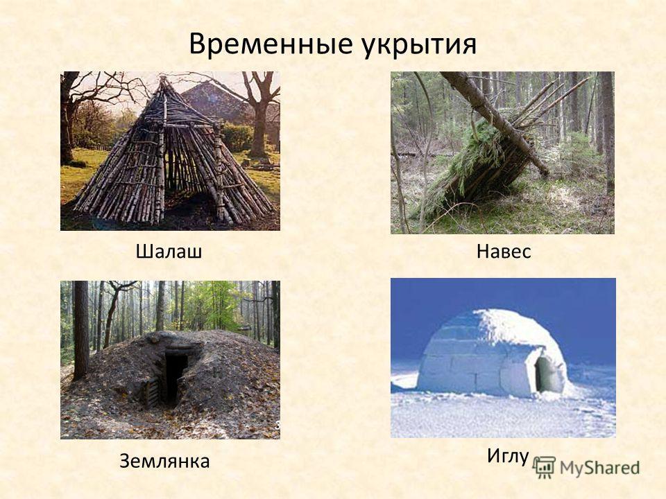 Временные укрытия Землянка Иглу НавесШалаш