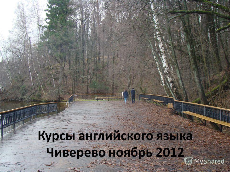 Курсы английского языка Чиверево ноябрь 2012