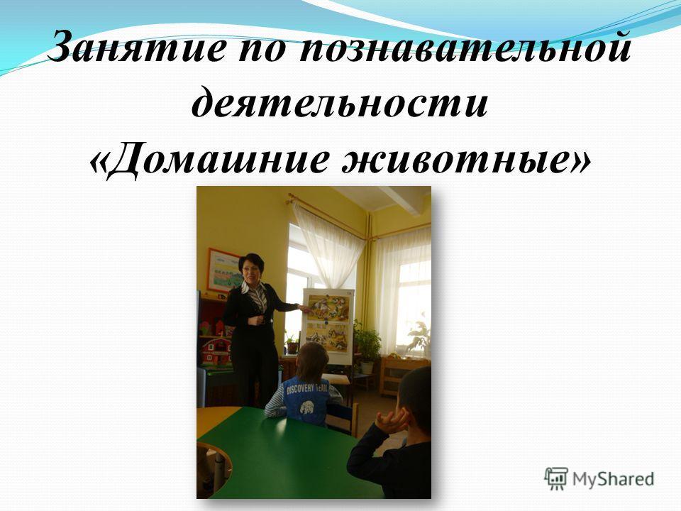 Занятие по познавательной деятельности «Домашние животные»