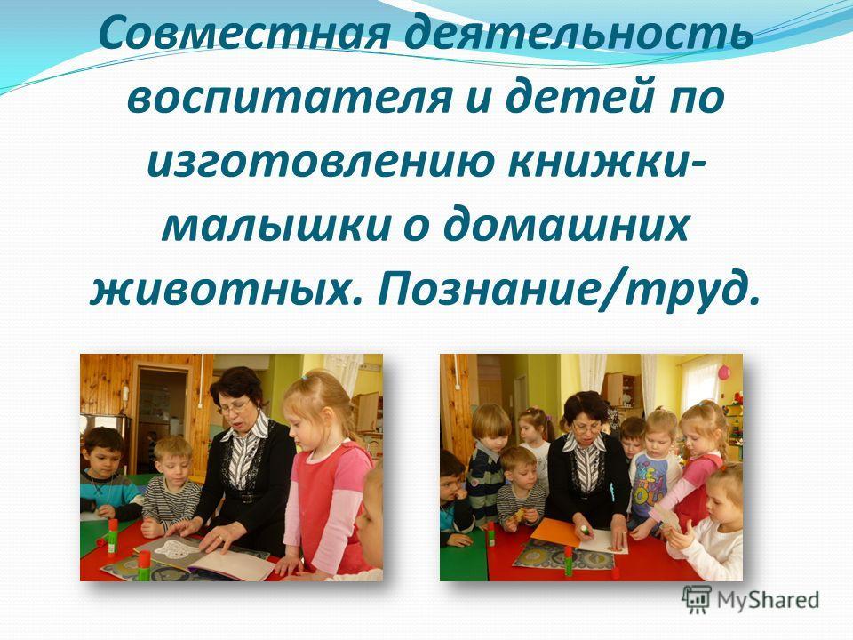Совместная деятельность воспитателя и детей по изготовлению книжки- малышки о домашних животных. Познание/труд.