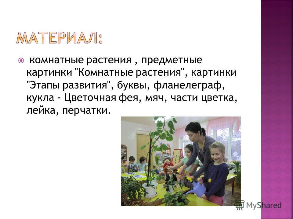 -знакомим детей с комнатными растениями; -закладываем основы экологического воспитания; -активизируем наблюдательность; -учим ухаживать за комнатными растениями; -расширяем словарь детей за счёт имён существительных в множественном и единственном чис