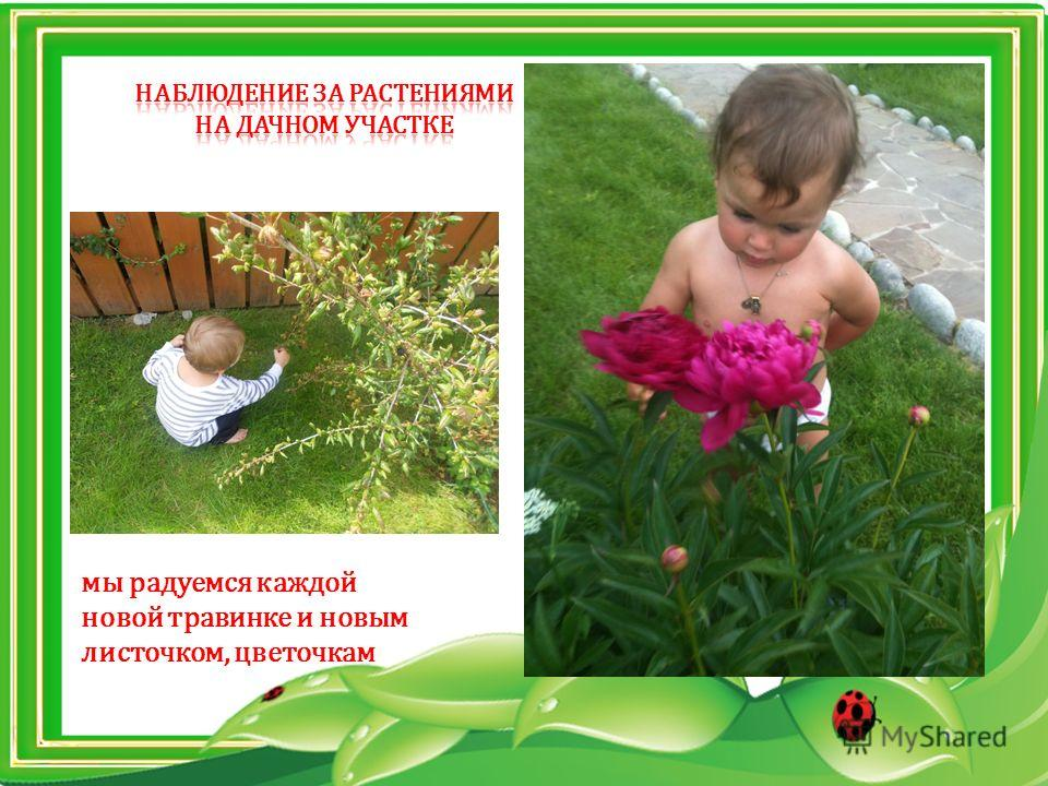 мы радуемся каждой новой травинке и новым листочком, цветочкам
