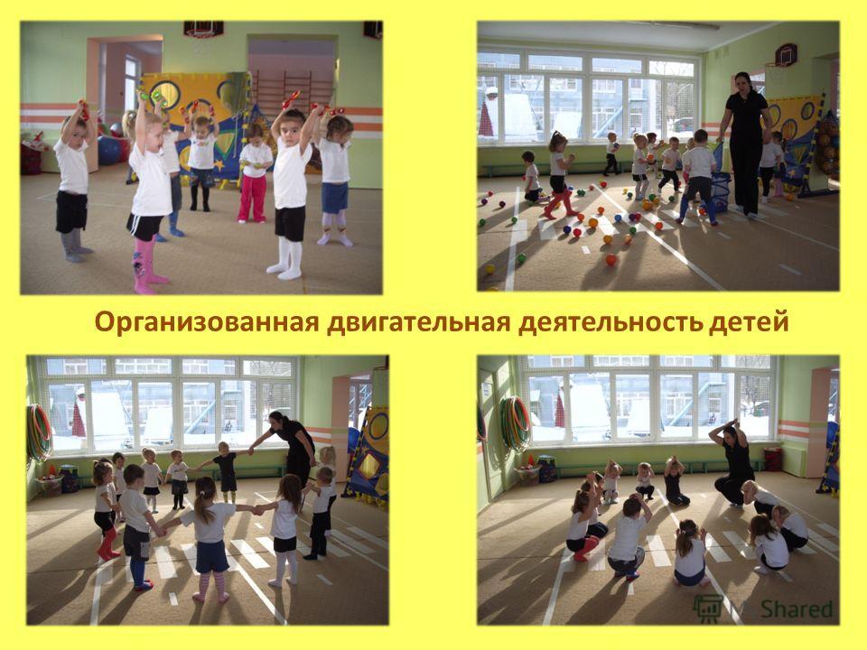 Организованная двигательная деятельность детей