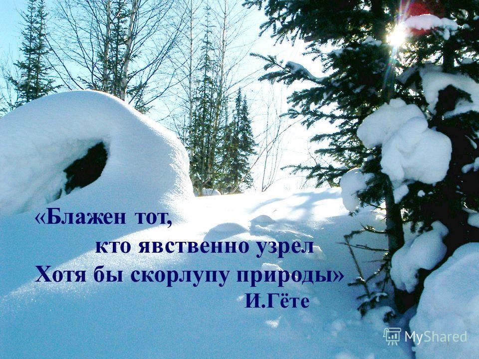 М.Н.Шадр ина 1 1 «Блажен тот, кто явственно узрел Хотя бы скорлупу природы» И.Гёте