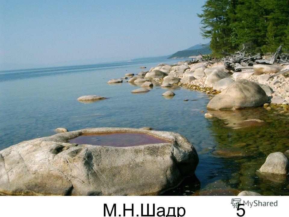 М.Н.Шадр ина 5