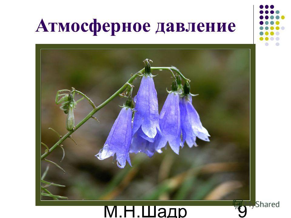 М.Н.Шадр ина 9 Атмосферное давление