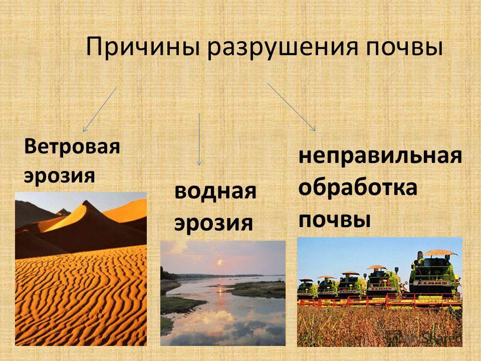 Причины разрушения почвы Ветровая эрозия водная эрозия неправильная обработка почвы