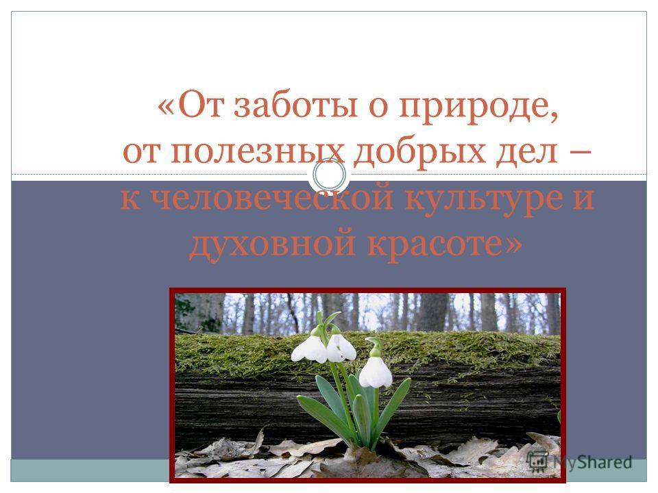 «От заботы о природе, от полезных добрых дел – к человеческой культуре и духовной красоте»