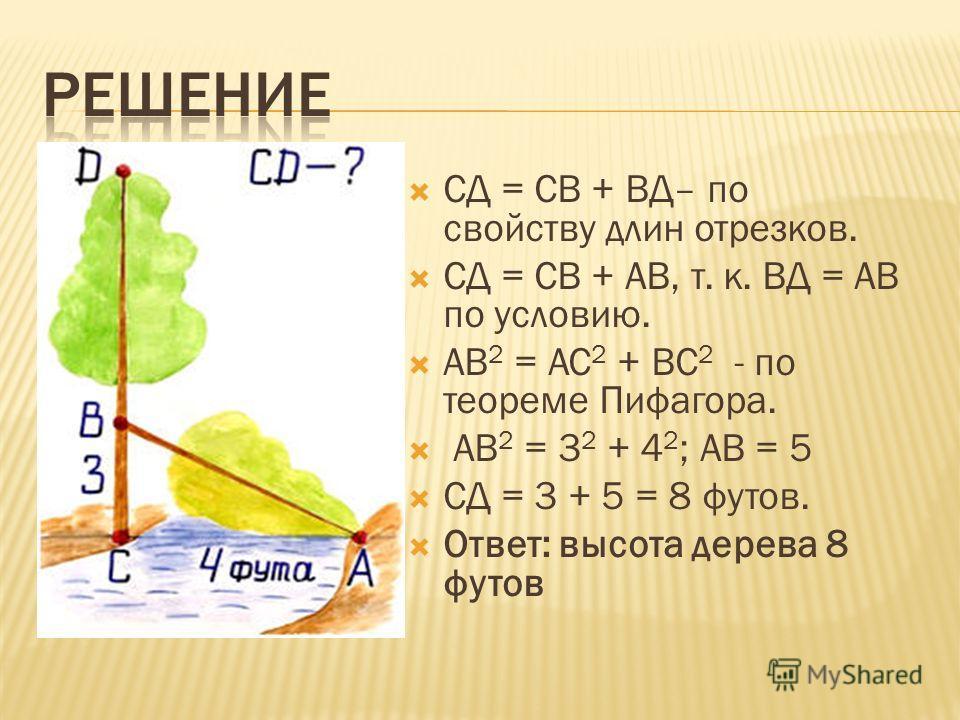 СД = СВ + ВД– по свойству длин отрезков. СД = СВ + АВ, т. к. ВД = АВ по условию. АВ 2 = AC 2 + ВС 2 - по теореме Пифагора. АВ 2 = 3 2 + 4 2 ; АВ = 5 СД = 3 + 5 = 8 футов. Ответ: высота дерева 8 футов