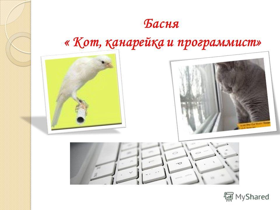 Басня « Кот, канарейка и программист»