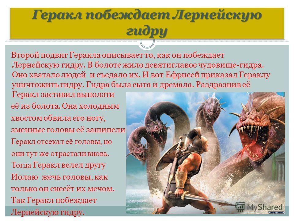 Геракл побеждает Лернейскую гидру Второй подвиг Геракла описывает то, как он побеждает Лернейскую гидру. В болоте жило девятиглавое чудовище-гидра. Оно хватало людей и съедало их. И вот Ефрисей приказал Гераклу уничтожить гидру. Гидра была сыта и дре