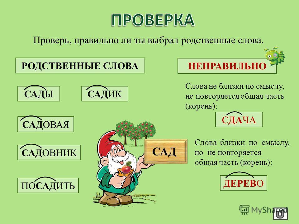 Прочитай, что обозначают слова: Сады – много садов. Садик – маленький сад. Дерево – растение. Садовая скамейка – скамейка в саду. Посадить – закопать корнями в землю. Садовник – тот, кто ухаживает за садом. Сдача – излишек денег, отдаваемый при расче