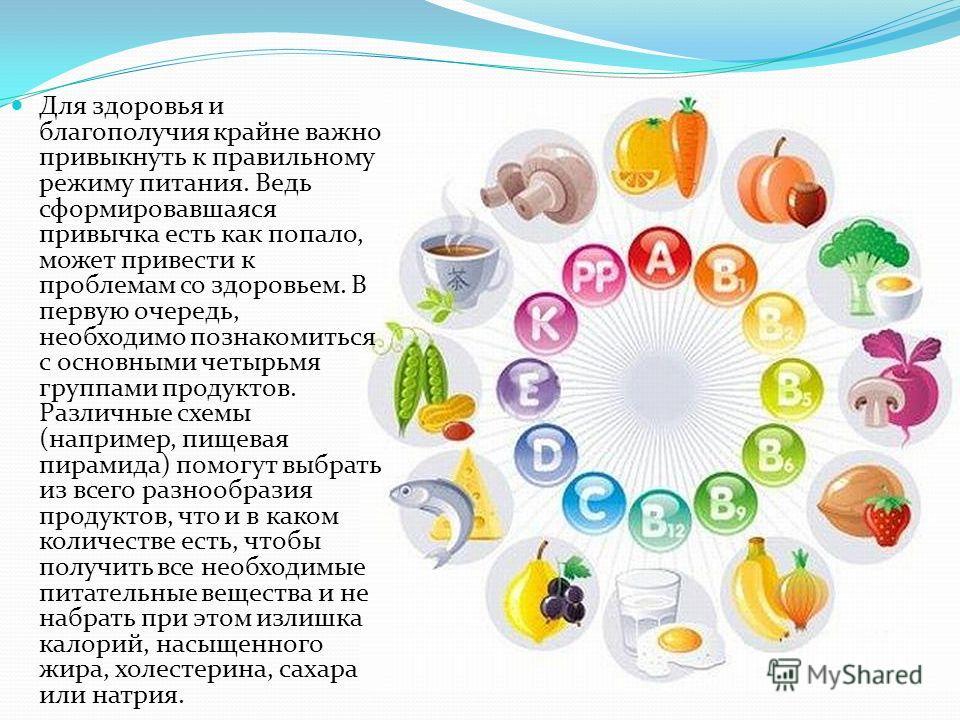Для здоровья и благополучия крайне важно привыкнуть к правильному режиму питания. Ведь сформировавшаяся привычка есть как попало, может привести к проблемам со здоровьем. В первую очередь, необходимо познакомиться с основными четырьмя группами продук