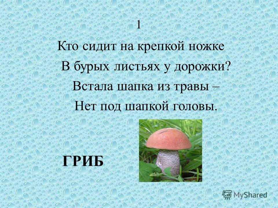 1 Кто сидит на крепкой ножке В бурых листьях у дорожки? Встала шапка из травы – Нет под шапкой головы. ГРИБ