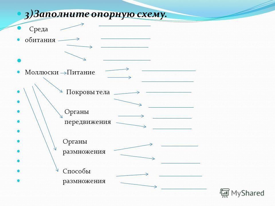 3)Заполните опорную схему.