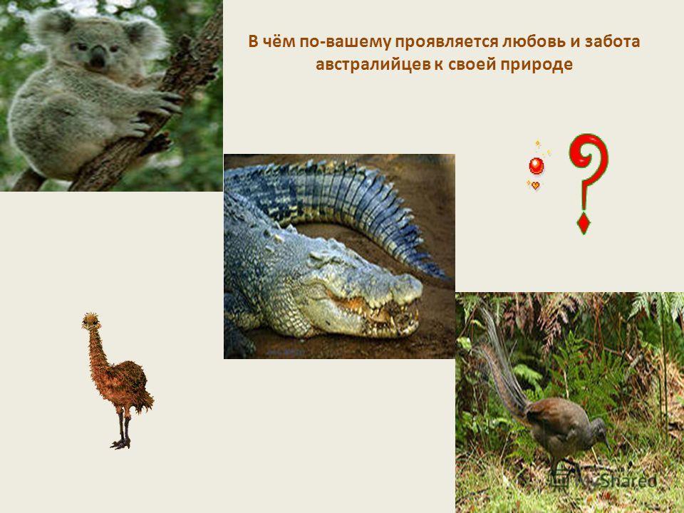 В чём по-вашему проявляется любовь и забота австралийцев к своей природе