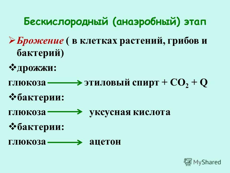 Бескислородный (анаэробный) этап Брожение ( в клетках растений, грибов и бактерий) дрожжи: глюкоза этиловый спирт + СО 2 + Q бактерии: глюкоза уксусная кислота бактерии: глюкоза ацетон