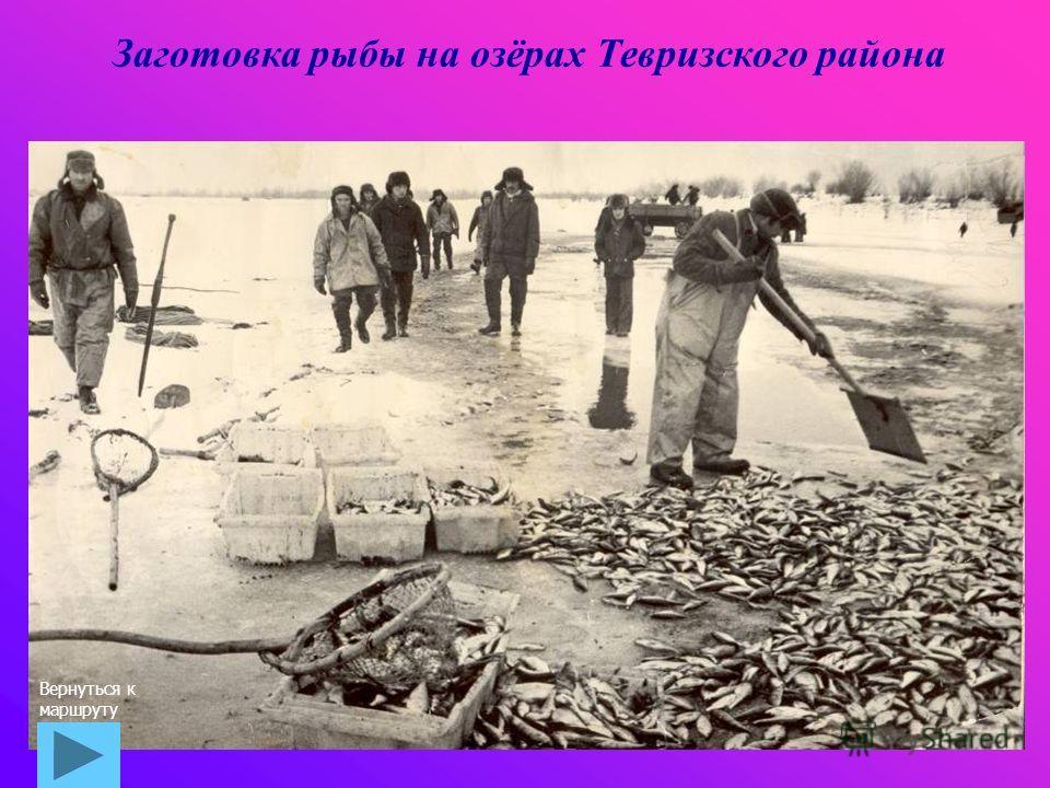Заготовка рыбы на озёрах Тевризского района Вернуться к маршруту