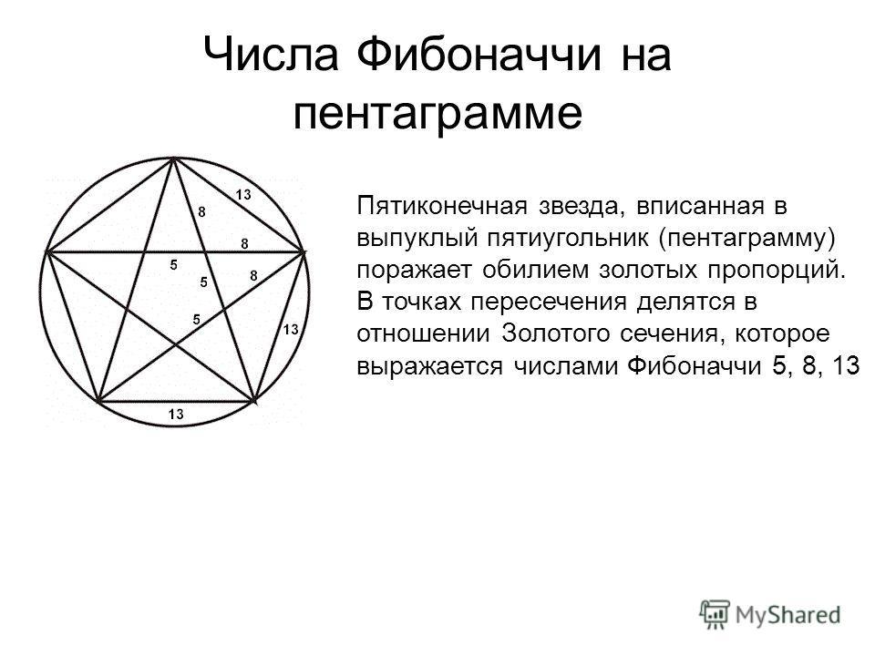 Числа Фибоначчи на пентаграмме Пятиконечная звезда, вписанная в выпуклый пятиугольник (пентаграмму) поражает обилием золотых пропорций. В точках пересечения делятся в отношении Золотого сечения, которое выражается числами Фибоначчи 5, 8, 13