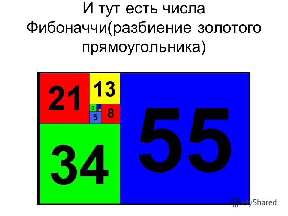 И тут есть числа Фибоначчи(разбиение золотого прямоугольника)