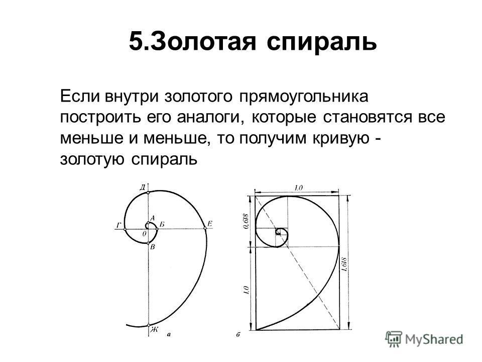 5.Золотая спираль Если внутри золотого прямоугольника построить его аналоги, которые становятся все меньше и меньше, то получим кривую - золотую спираль